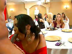 Bridal munch attains unkind when the Dancing Bear arrives